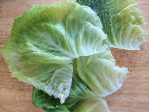 Cabbage Leaves for Golabki