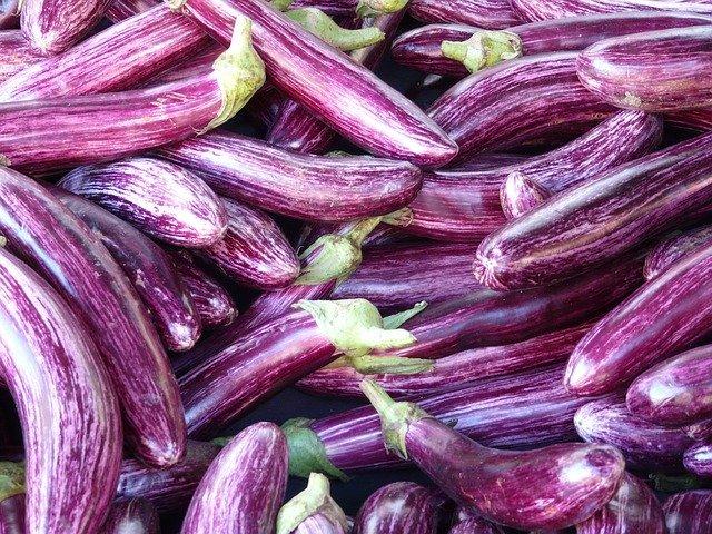 Lots Of Eggplants - How To Grow Eggplant