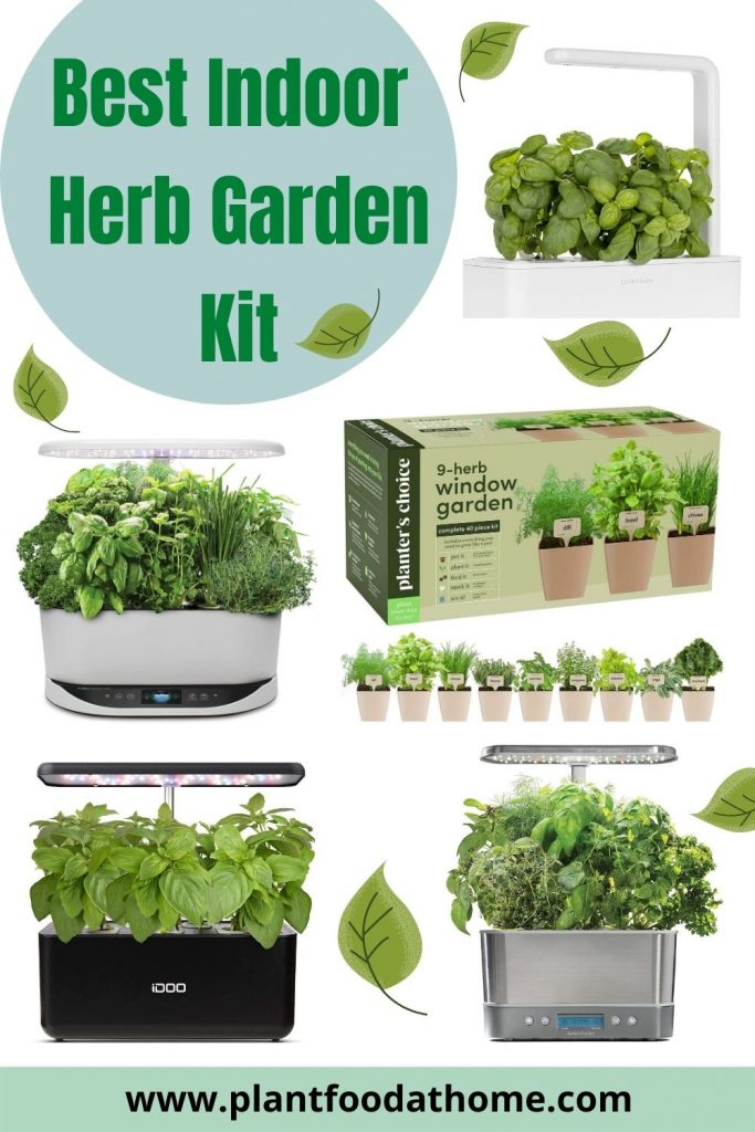 Best Indoor Herb Garden Kit