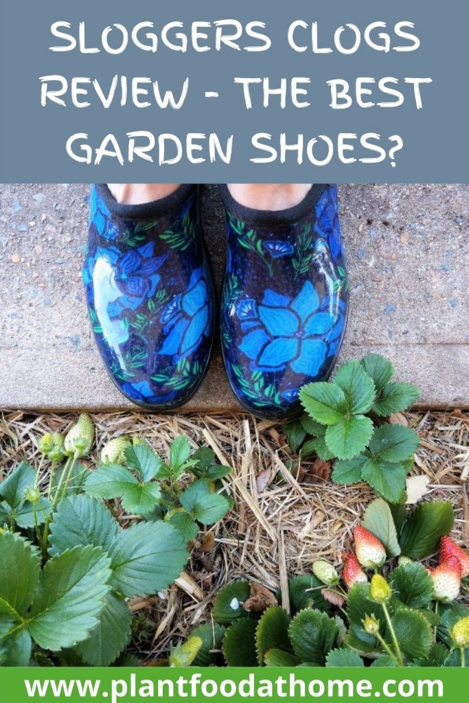 Sloggers Clogs Review - The Best Garden Shoes?
