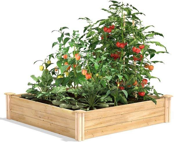 Greenes Gence Cedar Raised Garden Bed - The Best Raised Garden Beds Review