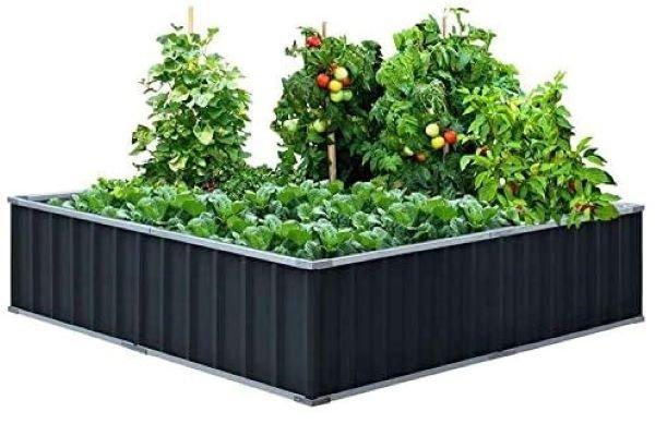 King Bird Raised Garden Bed - The Best Raised Garden Beds Review