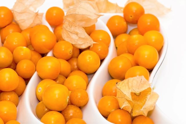 How to Grow Cape Gooseberry