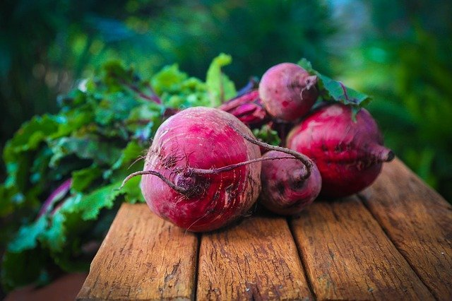 How to Grow Beets - Bulls Blood Beetroot