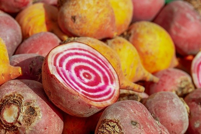 How to Grow Beets - Chioggia Candy Cane Beetroot