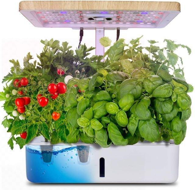 Moistenland Hydroponics Growing System - Best Indoor Vegetable Garden System