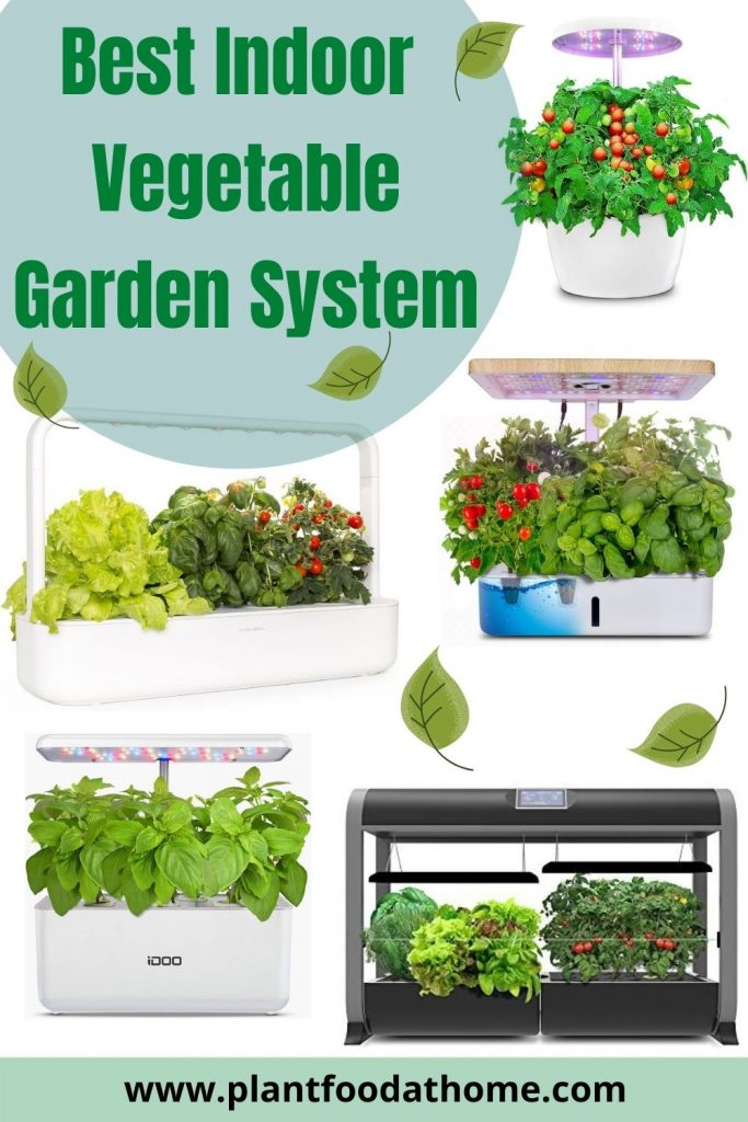 The Best Indoor Vegetable Garden System