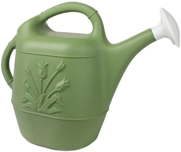 Union Watering Can with Tulip Design - Best Watering Cans