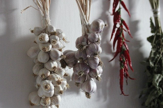 Hanging Garlic - How to Grow Garlic