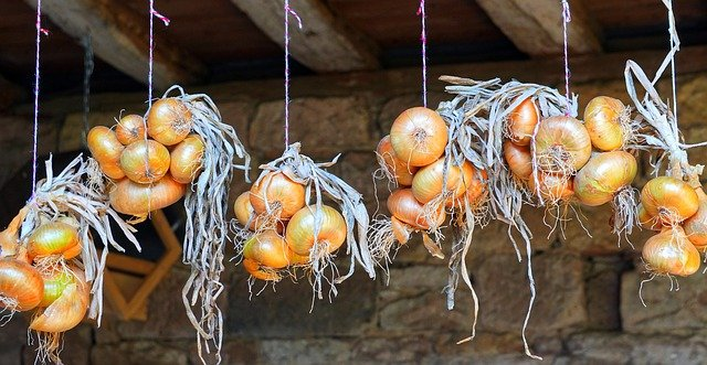 Why Hang Onions
