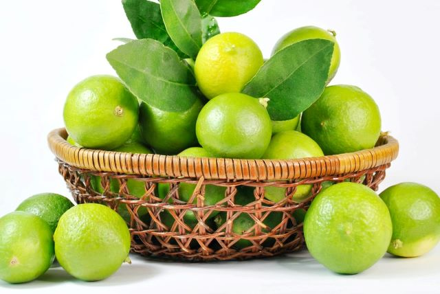 Key Limes in a Basket - How to Grow Key Limes for Key Lime Pie