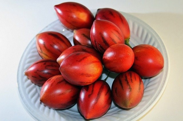 Red Tamarillo Fruit - How to Grow Tamarillo and Eat the Fruit