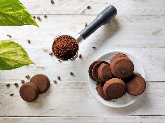 How to Use Coffee Grounds for Plants
