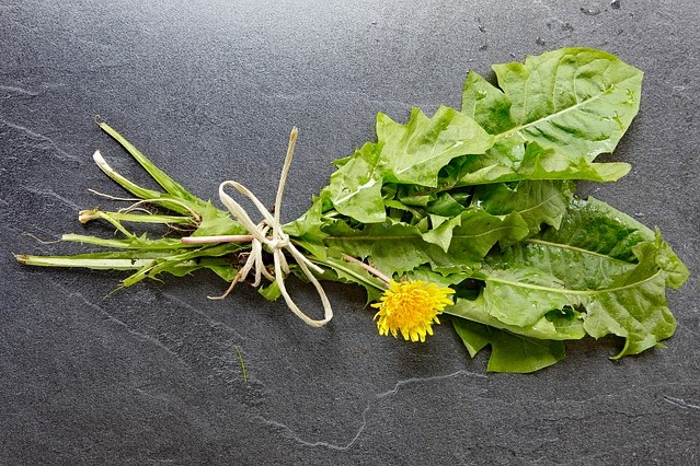 Tips For Eating Dandelion Greens, Flowers, and Roots