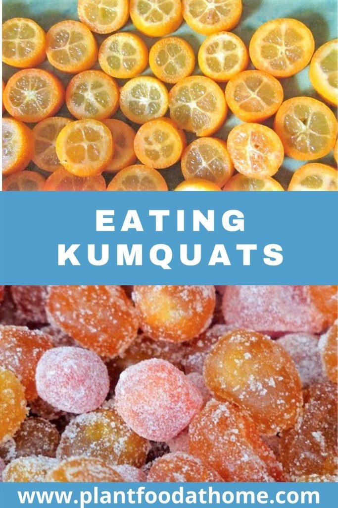 Eating Kumquats