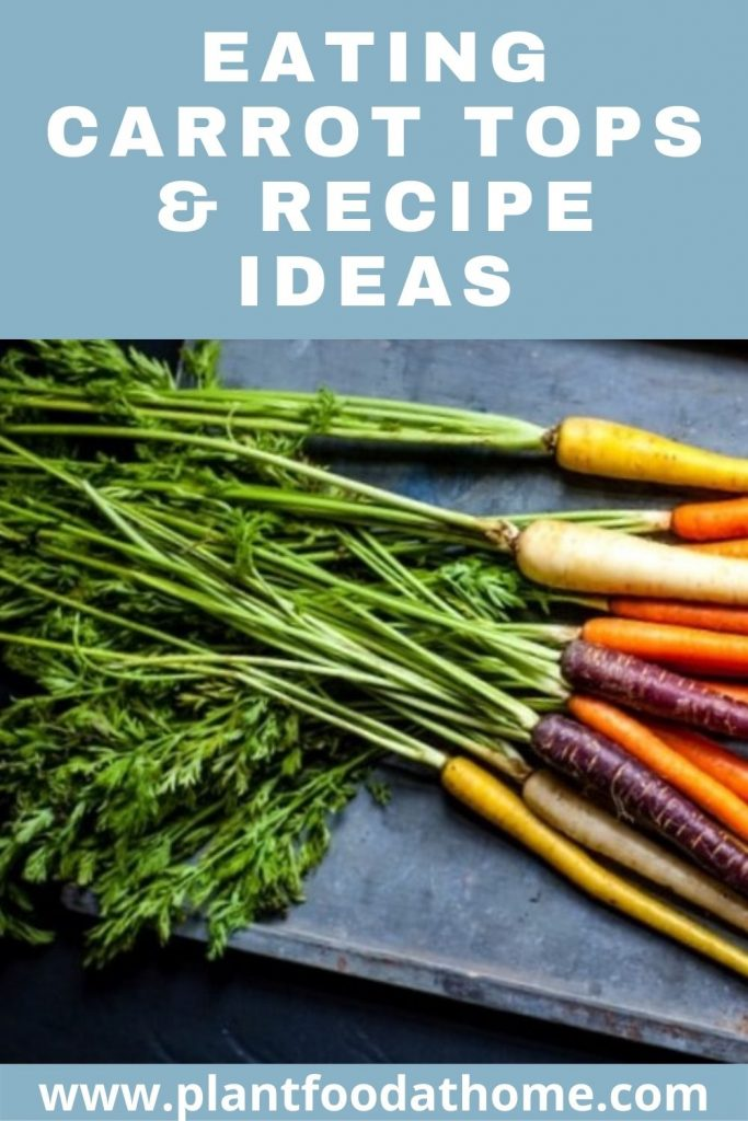 Eating Carrot Tops and Recipe Ideas
