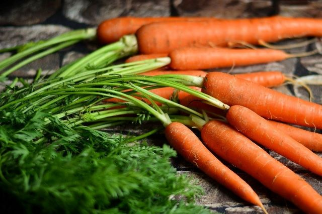 Eating Carrot Tops with Recipe Ideas - Bunch of Carrots with Leafy Tops