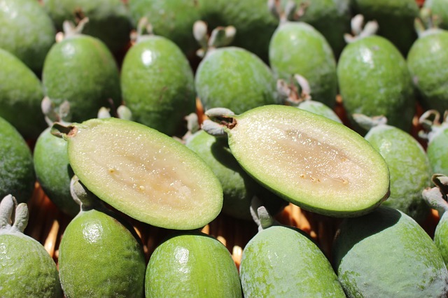 Eating Feijoa Fruit with Recipe Ideas - Feijoa Fruit cut in Half
