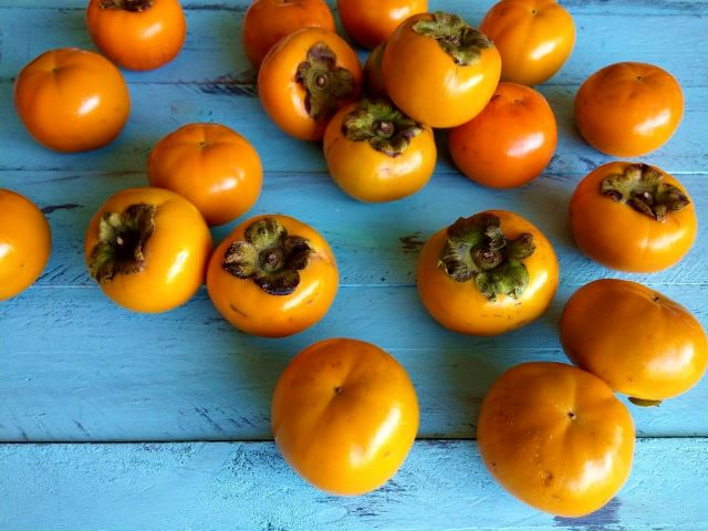 Storing Persimmon Fruit - How to Grow a Persimmon Tree