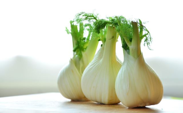 Bulb Fennel - Cooking and Eating Fennel