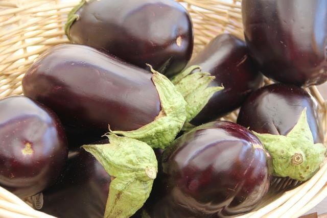 What Makes Eggplants Bitter